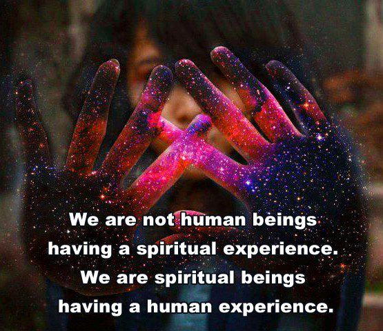 tumblr_static_we-are-not-human-beings-having-a-spiritual-experience.-we-are