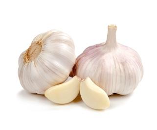 garlic-prevents-gastric-cancer