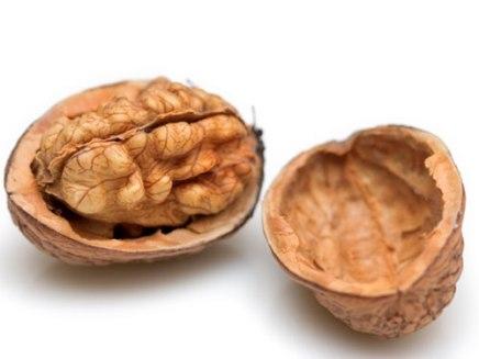 22100414-walnuts2